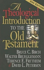 A_Theological_Introduction_2005